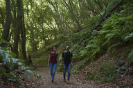 Spain, Canary Islands, La Palma, couple walking hand in hand through a forest - PACF00163