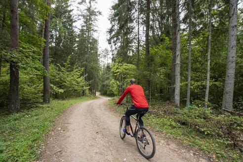 Athlete mountainbiking in the woods - KKAF02377