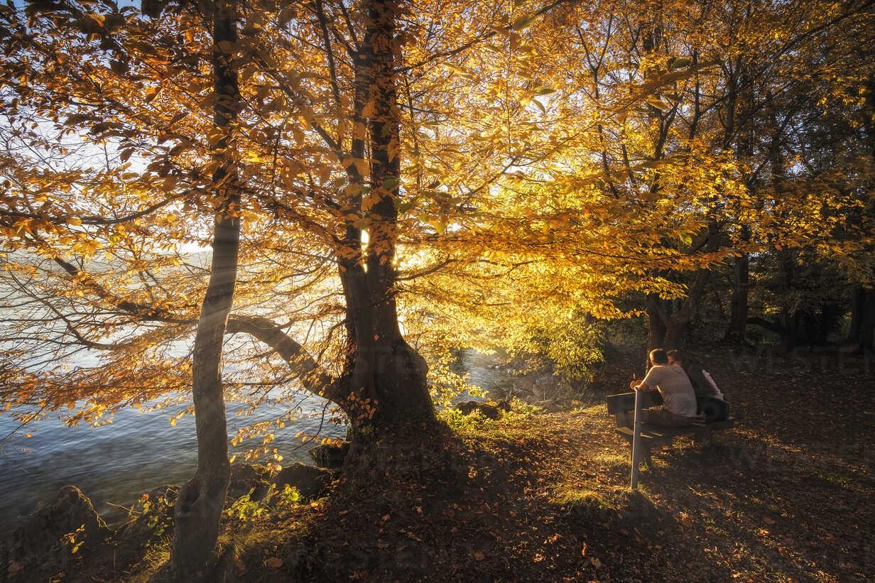 Autumn in Gmunden, Upper Austria, Austria - AURF07625 - Cavan Images/Westend61