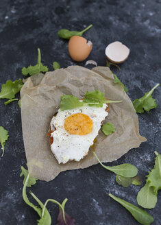 Fried egg on slice of brown bread coated with paprika cream - JUNF01365