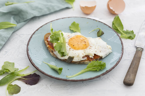 Fried egg on slice of brown bread coated with paprika cream on plate - JUNF01368