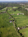 Indonesia, Bali, Ubud, Aerial view of rice fields - KNTF02005