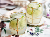 Cocktails with lime slices and ice cubes - CUF44804