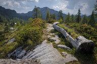 Austria, Ausseer Land, Mountain landscape - HAMF00390