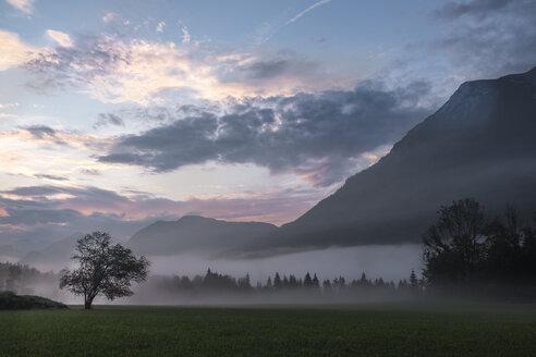 Austria, Ausseer Land, Landscape in morning mist - HAMF00396