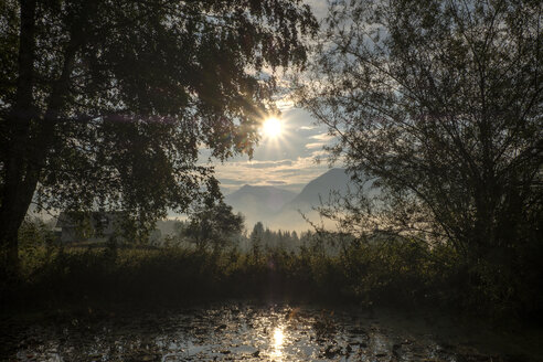 Austria, Ausseer Land, Lake and trees in backlight - HAMF00399