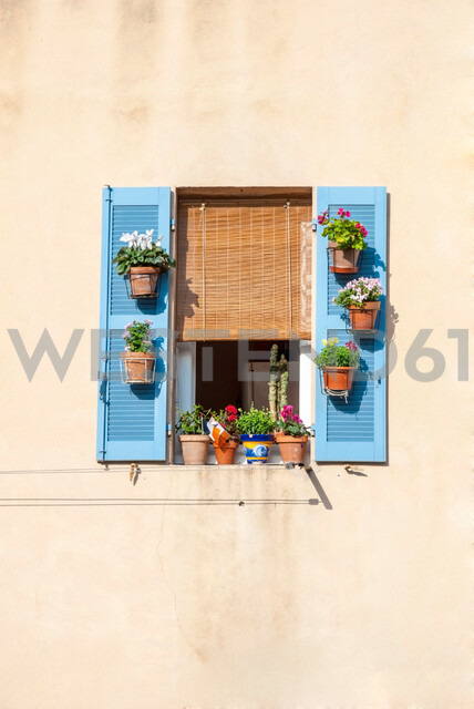 Potted plants on a windowsill in Southern France - INGF00211