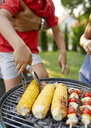 Boy turning a corn cob during a barbecue in garden - ZEDF01602