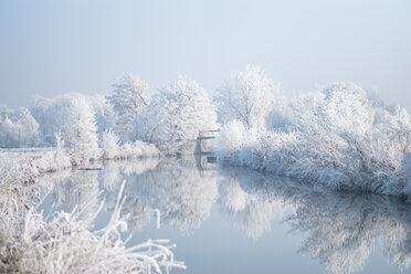 Tranquil scene of a snow covered trees by a lake - INGF00380