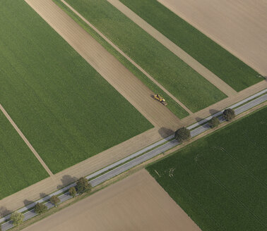 Aerial view combine harvester in agricultural crop, Hohenheim, Baden-Wuerttemberg, Germany - FSIF03252