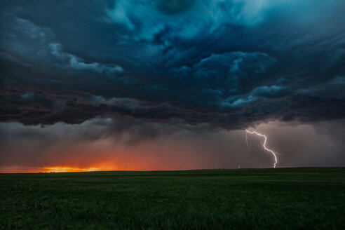 Asperatus clouds in sunset and cloud-to-ground lightning bolt, Ogallala, Nebraska, US - ISF19842