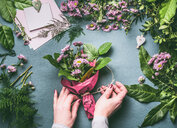 Human hands holding flowering plants - INGF00480