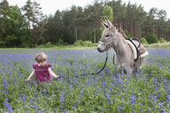 Girl leading donkey through field of wildflowers - FSIF03291