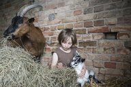 Girl sitting in hay with goats in barn - FSIF03372