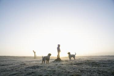 Girl in frozen winter field with dogs - FSIF03378