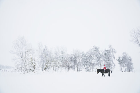Girl in Santa hat riding donkey in snowy field - FSIF03384