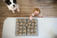 High angle view of dog sitting by cute baby boy taking cookies from table at home - CAVF49601