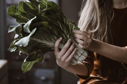 Hands of woman holding chard - ALBF00640