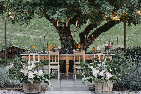 Festive laid table with candles under a tree - ALBF00697