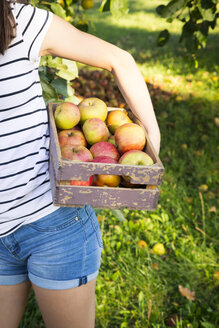 Girl holding wooden box of harvested apples, partial view - LVF07484