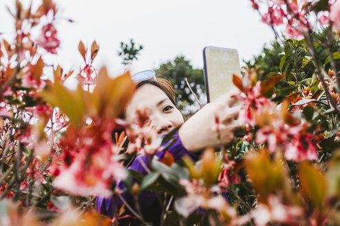 Female hiker photographing plants with mobile phone while standing against sky - CAVF49667
