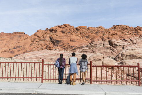 Rear view of friends looking at rock formations while standing by railing against sky during sunny day - CAVF49721