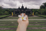 Cropped hand of woman holding flower showing towards temple against cloudy sky - CAVF49808