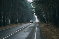 Van driving on country road through pine forest - VPIF00921
