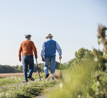 Two old friends taking a stroll through the fields, talking about old times - UUF15449