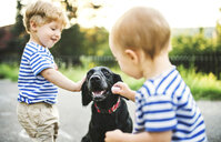 Toddler and his little sister stroking dog outdoors - HAPF02788