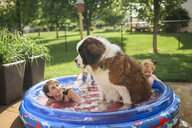 Siblings with dog swimming in wading pool at yard - CAVF50637