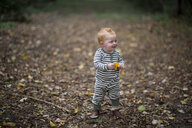 Cute baby boy holding leaf while looking away at park - CAVF50871