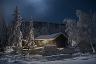 Chena Hot Springs by snow covered trees against log cabin - CAVF51393