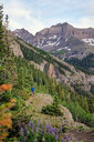 Man hiking, Mount Sneffels, Ouray, Colorado, USA - ISF20093