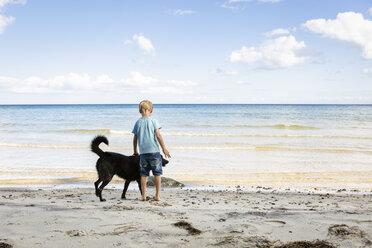 Boy stroking dog at the beach - OJF00281