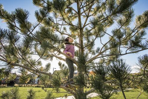 Playful girl climbing on tree at park - CAVF51831