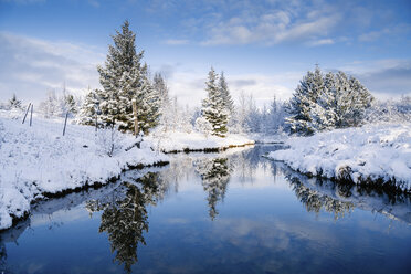 Scenic view of trees by stream amidst snow covered field - CAVF52317