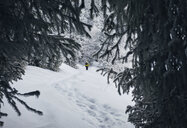 Rear view of male hiker with backpack standing on snow covered field in forest - CAVF52344