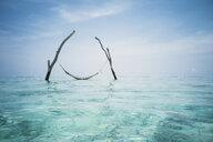 Tranquil hammock hanging over idyllic blue ocean, Maldives, Indian Ocean - HOXF04140
