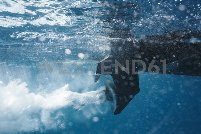 Boat propellor spinning underwater - HOXF04158 - Martin Barraud/Westend61