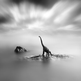 A toy dinosaur on a stone, black and white, long exposure - XCF00176