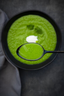 Spoon and bowl of pea mint soup - LVF07511