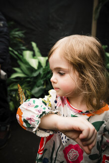 Cute baby girl holding butterfly while standing against plants - CAVF52573