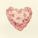 Studio shot of a pink heart shape over a white background - INGF05576