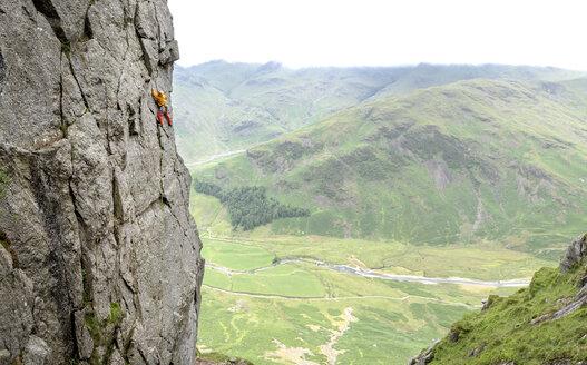 United Kingdom, Lake District, Langdale Valley, Gimmer Crag, climber on rock face - ALRF01357