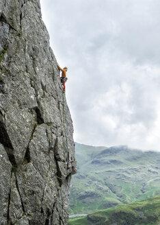 United Kingdom, Lake District, Langdale Valley, Gimmer Crag, climber on rock face - ALRF01360