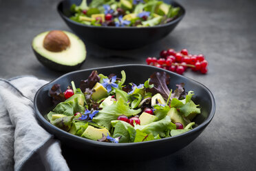 Bowl of mixed salad with avocado, red currants and borage blossoms - LVF07514