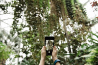 Cropped hands of boy photographing trees at greenhouse - CAVF52717