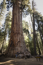 USA, California, Sequoia National Park, Sequoia tree 'President' and couple - FCF01532