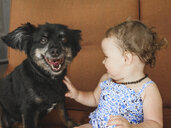 Close-up of cute baby girl touching dog while sitting at home - CAVF52890